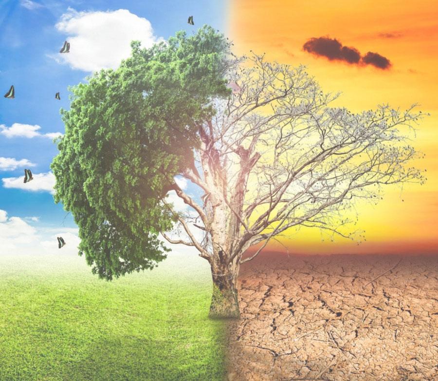 cambiamenti_climatici